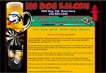 Big Dog Saloon